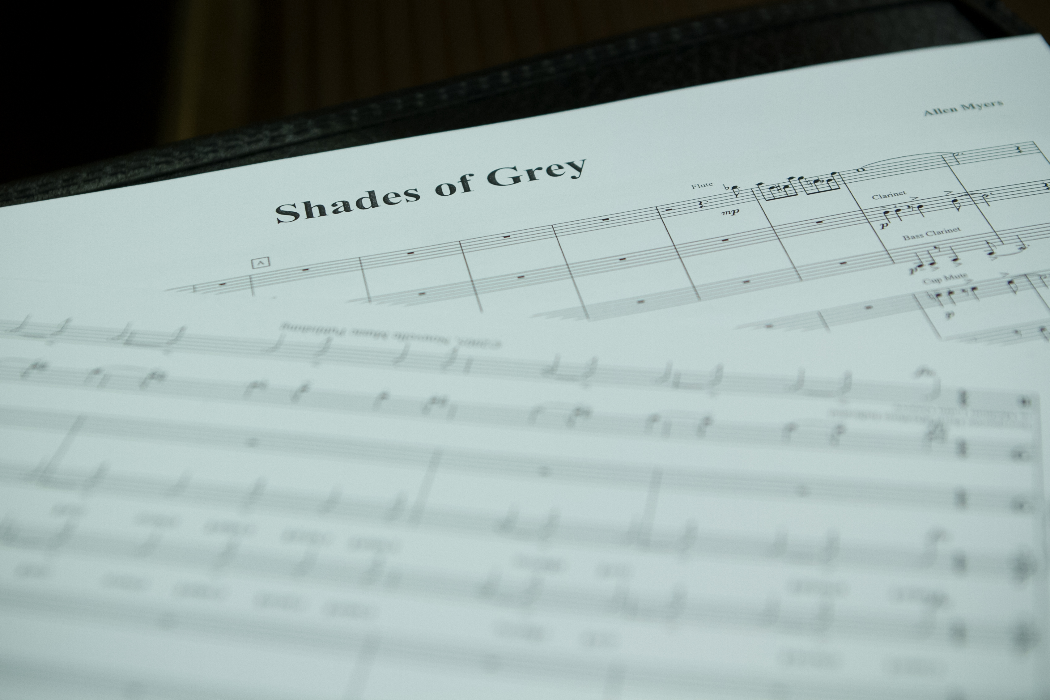 shades of grey first page photo